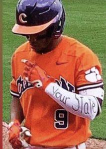South Carolina Baseball Your State